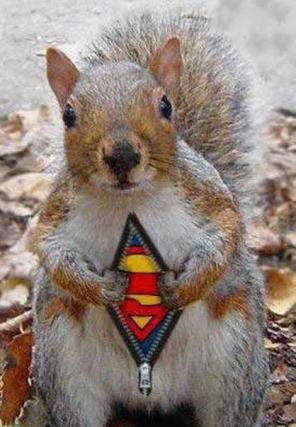 super_squirrel